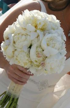 Bouquet 978 228x350